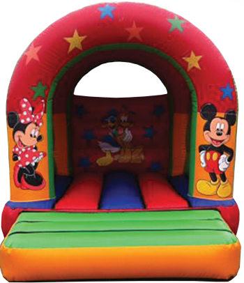 Disney Bouncy Castle